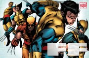 XMen Evolutions Wolverine