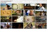Pochodzenie cz³owieka / Origins of Us (2011) PL.TVRip.XviD / Lektor PL
